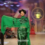 Nadya Mistry Collection At Pantene Bridal Couture Week 2013 0029