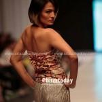 Zari Faisal Collection 2013 At Fashion Pakistan Week 0010