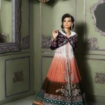 Amna Ajmal Bridal Wear Collection 2013 for Women 014