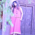 Andaaz Summer Collection 2013 for Working Women 002