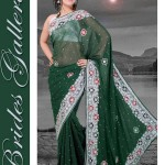 Brides Galleria Designer Saree Collection 2013 For Women 0010