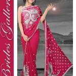 Brides Galleria Designer Saree Collection 2013 For Women 004