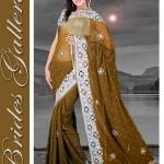 Brides Galleria Designer Saree Collection 2013 For Women 007
