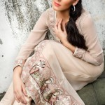 Threads And Motifs Party Wear Collection 2013 For Women 0010