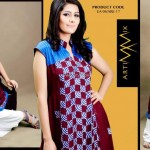Artimmix Embroidered Dresses Collection 2013 for Women 007