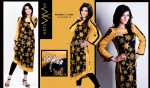 Artimmix Embroidered Dresses Collection 2013 for Women 008
