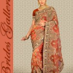 Brides Galleria Saree Collection 2013 For Women 006