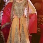 Natasha Couture Sarees And Lehenga Sarees Collection 2013 For Women 0014