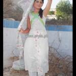 Popular Style Eid Dresses 2013 For Women 009