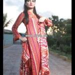 Popular Style Eid Dresses 2013 For Women 012