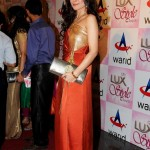 Shehla Chatoor - Lux Style Awards 2013 (9)