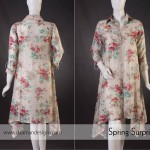 Daaman Eid Collection 2013 For Women 002
