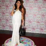 Shehla Chatoor - Lux Style Awards 2013 (5)