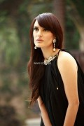 Pinx Evening Wear Collection 2013 for Women 007