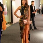 Shehla Chatoor - Lux Style Awards 2013 (4)