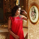 Teena by Hina Butt New Party Wear 2013 for Eid 012