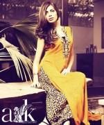 Aleena Rehan Khan Formal Wear Collection 2013 For Women 005