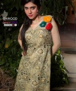 Dawood Swiss Voile Collection 2013 by Dawood Textiles 012
