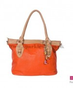 Sparkles Handbags Collection 2013 For Girls 002