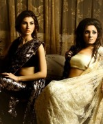 Aarasteh By Faryal Saree Collection 2013 For Women 0010
