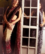 Aarasteh By Faryal Saree Collection 2013 For Women 0011
