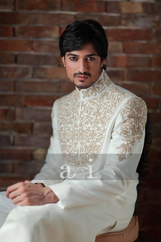 Arsalan Iqbal Sherwani Arsalan Iqbal Sherwani