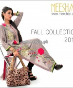 Meeshan Fall Collection 2013 For Girls 001