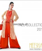 Meeshan Fall Collection 2013 For Girls 002