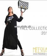 Meeshan Fall Collection 2013 For Girls 005