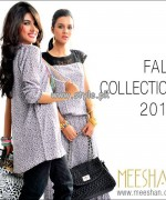 Meeshan Fall Collection 2013 For Women 006