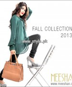 Meeshan Fall Collection 2013 For Women 009