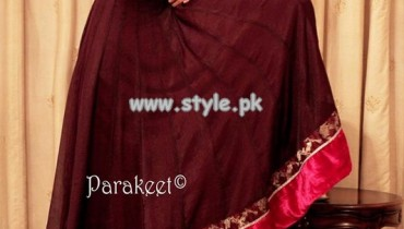 Parakeet Casual Wear Dresses 2013 For Fall 008
