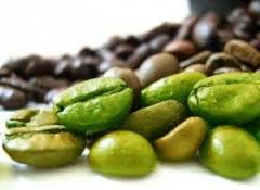 The nutritional facts of green coffee beans