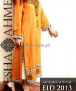 Ayesha Ahmed Autumn Winter Collection 2013 For Girls2