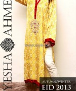 Ayesha Ahmed Autumn Winter Collection 2013 For Women6
