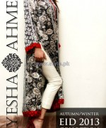 Ayesha Ahmed Autumn Winter Collection 2013 For Women7