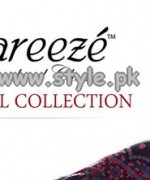 Bareeze Eid Fall Collection 2013 For Girls 002