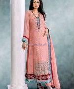 Popular Style Embroidered Dresses 2013 For Women4