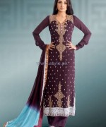 Popular Style Embroidered Dresses 2013 For Women5