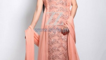 ZZ Embroidered Dresses 2013 For Women9