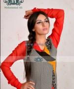 Ali Fashion Designer Winter Dresses 2013-2014 For Women 8