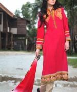 Bonanza New Winter Dresses 2013-2014 for Women 008