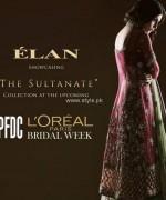 Elan Bridal Wear Dresses 2013 for Women 005