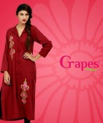 Grapes The Brand Winter Dresses 2013-2014 For Women 003