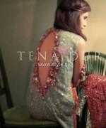 Tena Durrani Winter Dresses 2013 for Women 004