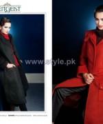 Zeitgeist Western Dresses 2013-2014 For Fall Winter 5