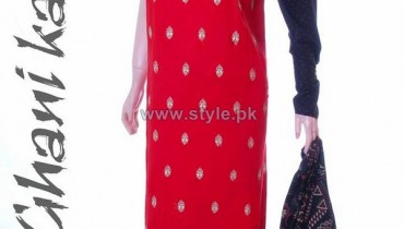 Ghani Textile Winter Clothes 2014 For Women 11