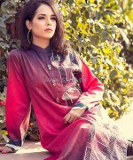 Pasho Casual Wear Dresses 2014 For Winter 3