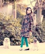 Pasho Casual Wear Dresses 2014 For Winter 5