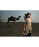 Shehla Chatoor Bridal Dresses 2014 For Women 004
